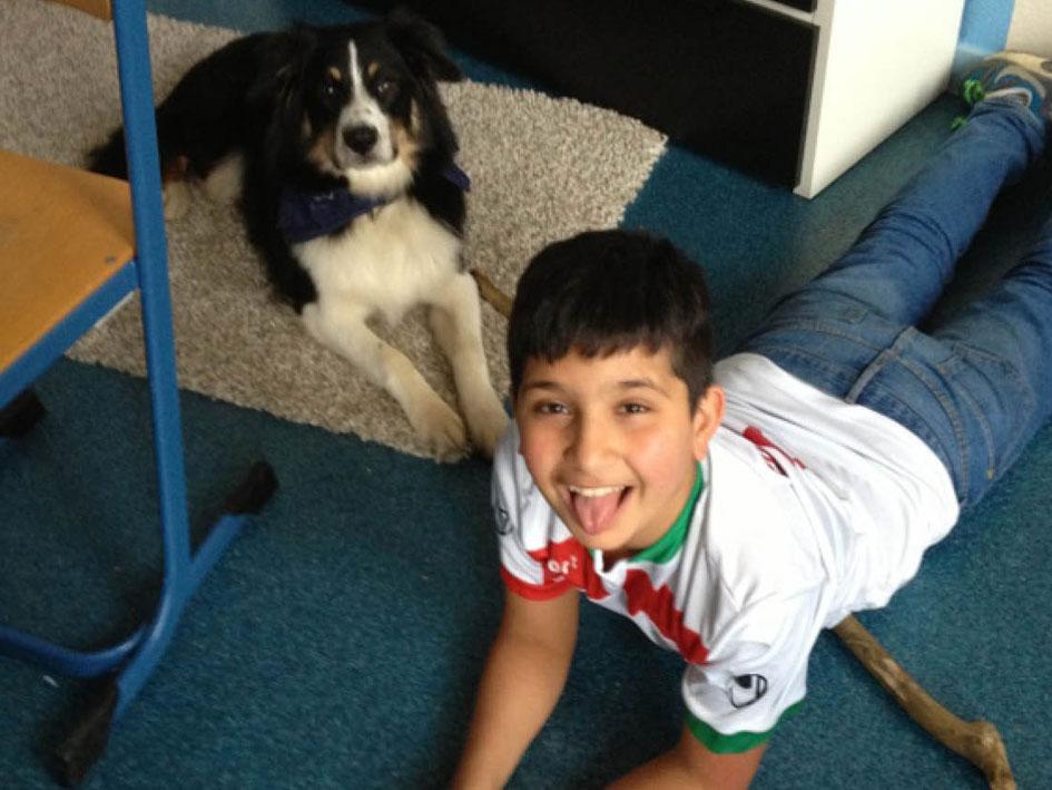 Schulhund Emil begeistert - Bild 1